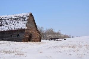 Alberta Barn, Alberta, Canada