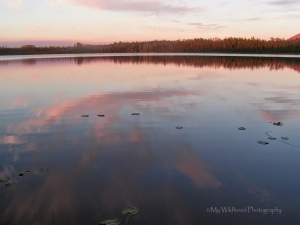 Canadian Sunrise, 2 a.m., Yukon Territory