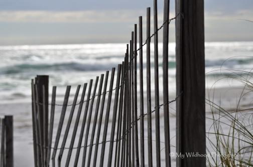 Dark Dune Fence (landscape), Destin, Florida