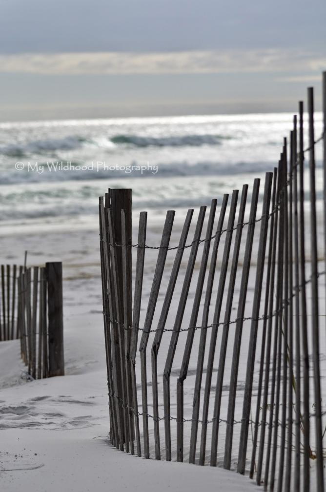 Dark Dune Fence (portrait), Destin, Florida
