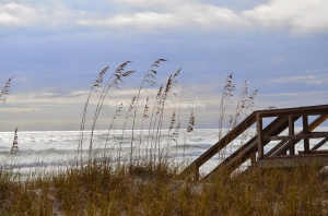 Dune Boardwalk, Destin, Florida