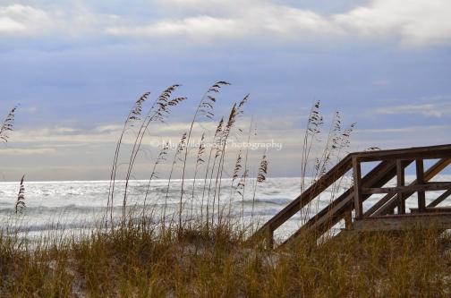 Dune Boardwalk, Destin, Florida