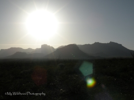 Late Sun Over the Chisos, Big Bend National Park, Texas